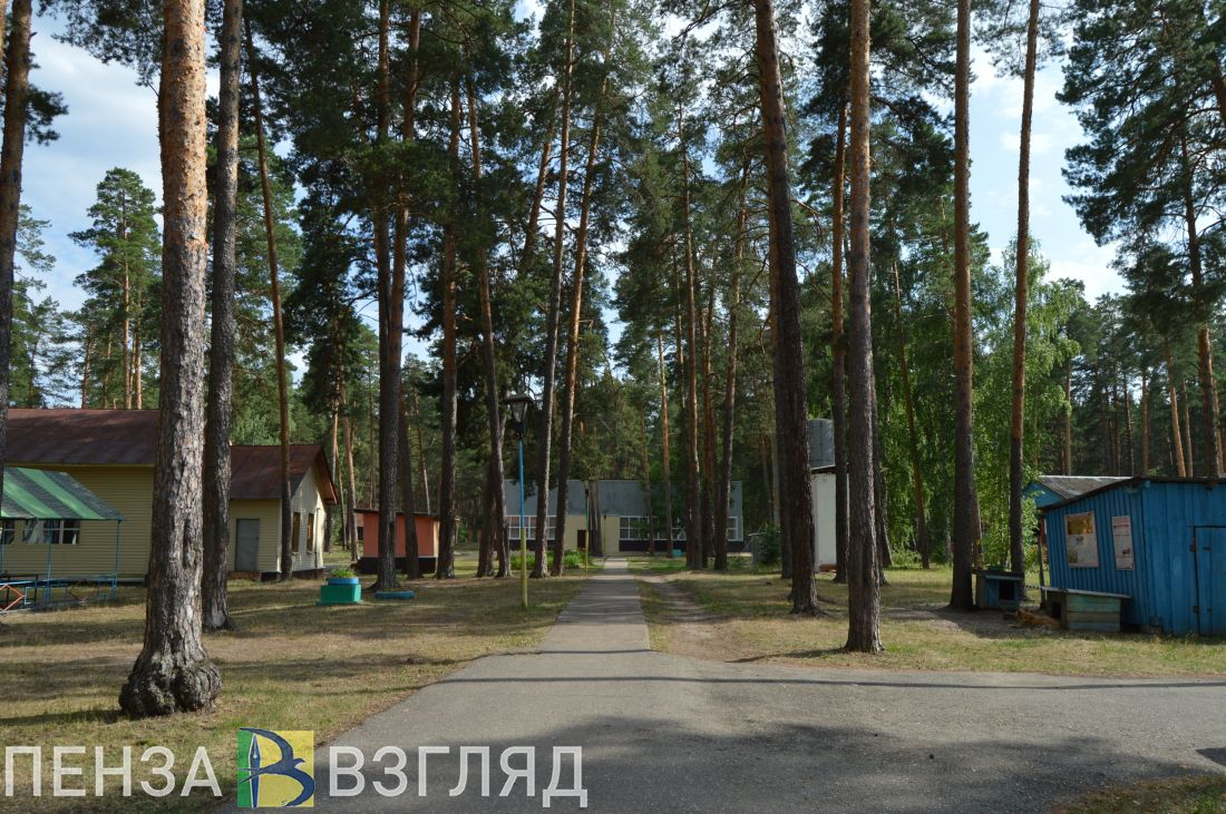 В Пензенской области летом будут работать 20 загородных лагерей
