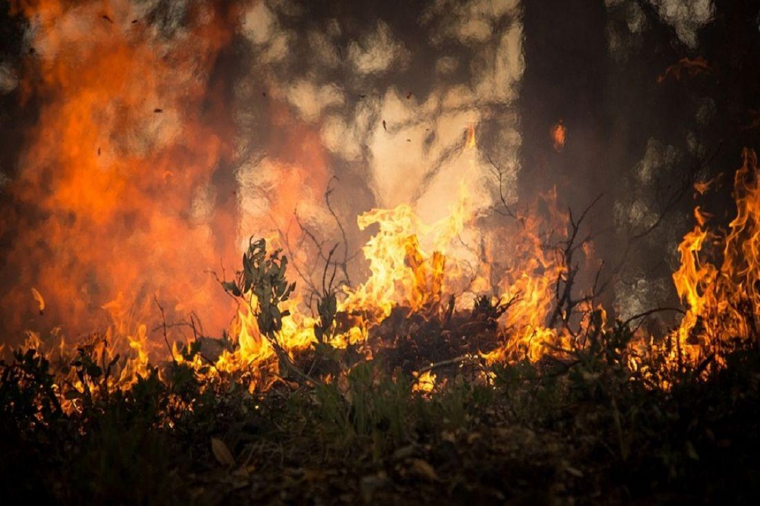 «Отменять особый противопожарный режим в регионе преждевременно»